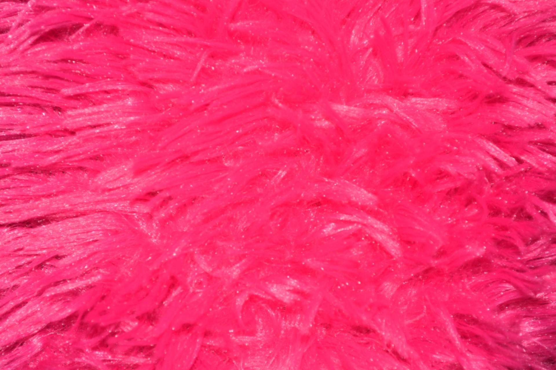 Pink Fur Colorful Background Nap Stock Photo HD   Public Domain 1920x1280