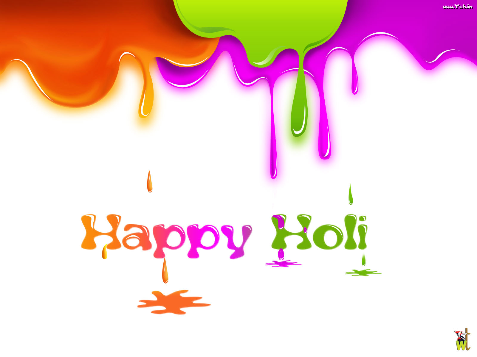 Holi wallpapers 2013 Holi wallpapers valentine messages wallpapers 1600x1200