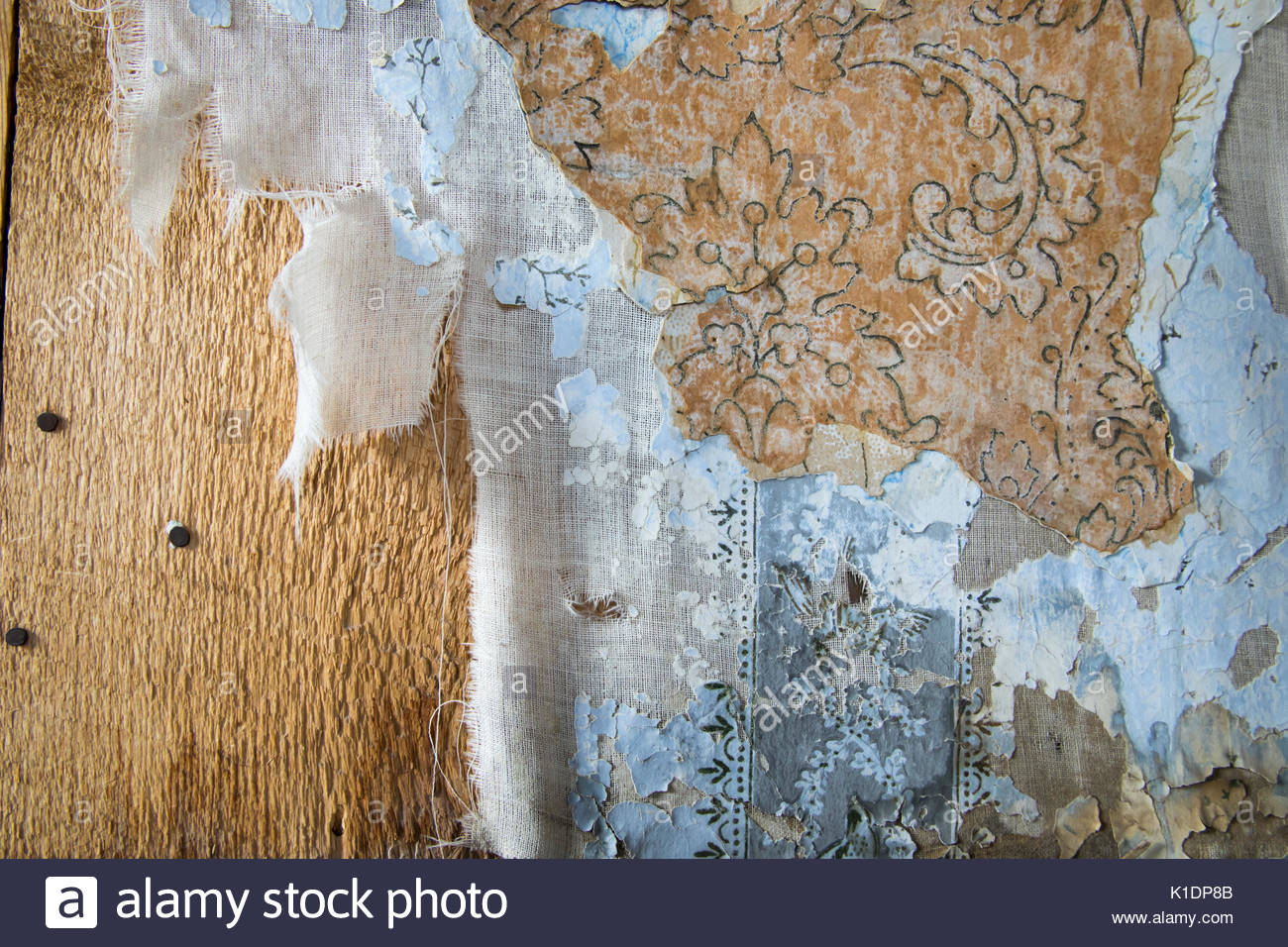 Layers of peeling wallpaper inside house in Bodie State Historic 1300x956
