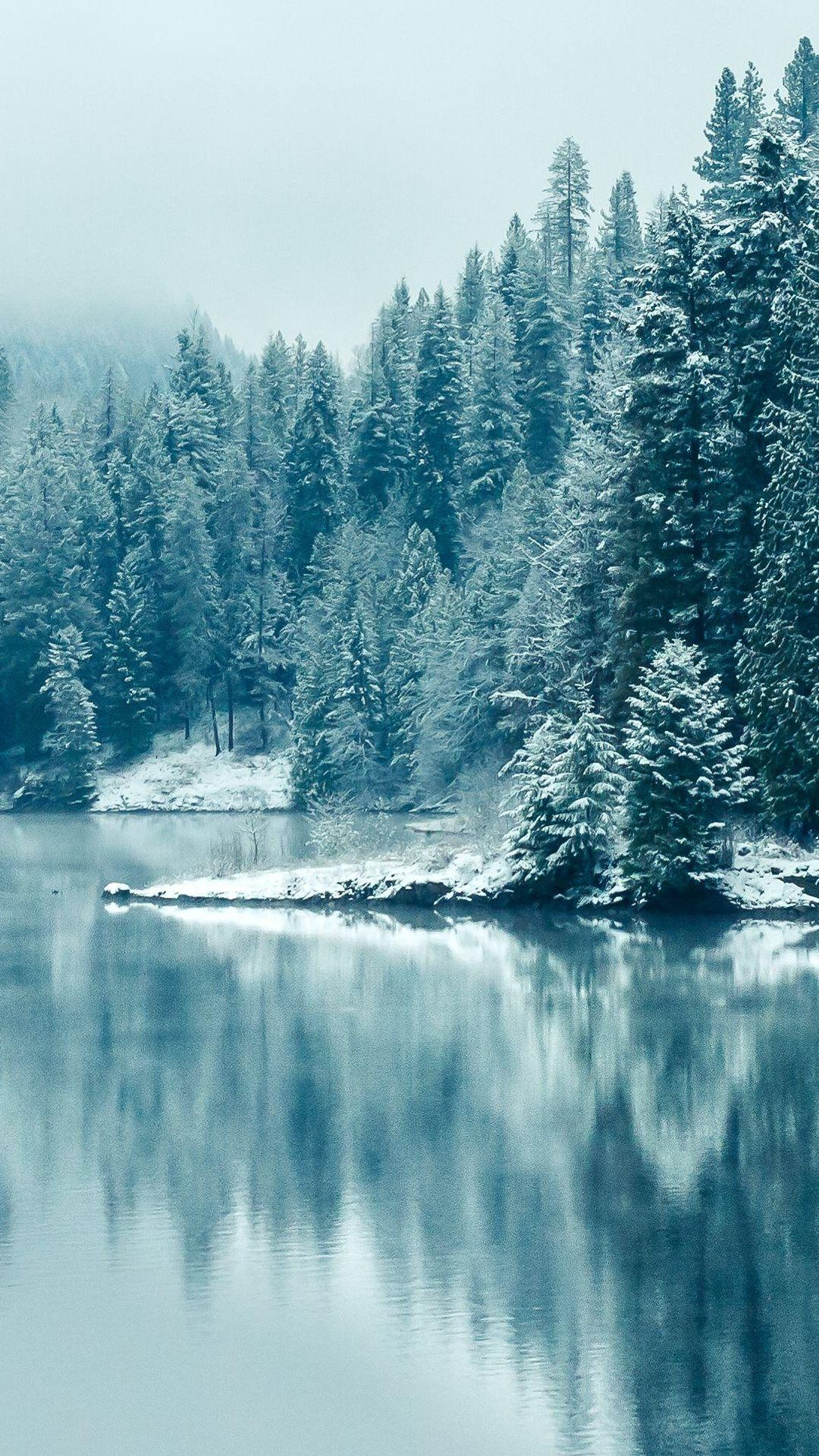 Turquoise Pine Forest Lake Snow in 2020 Winter wallpaper Winter 1080x1920