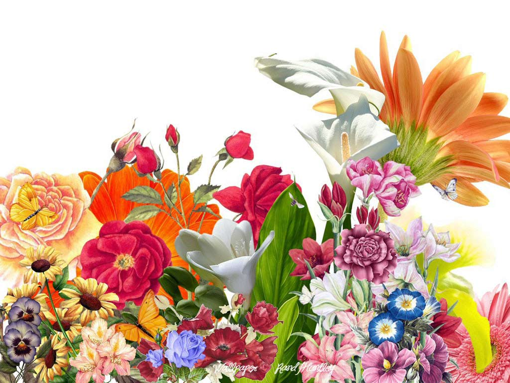 [43+] Large Floral Wallpaper Designs on WallpaperSafari