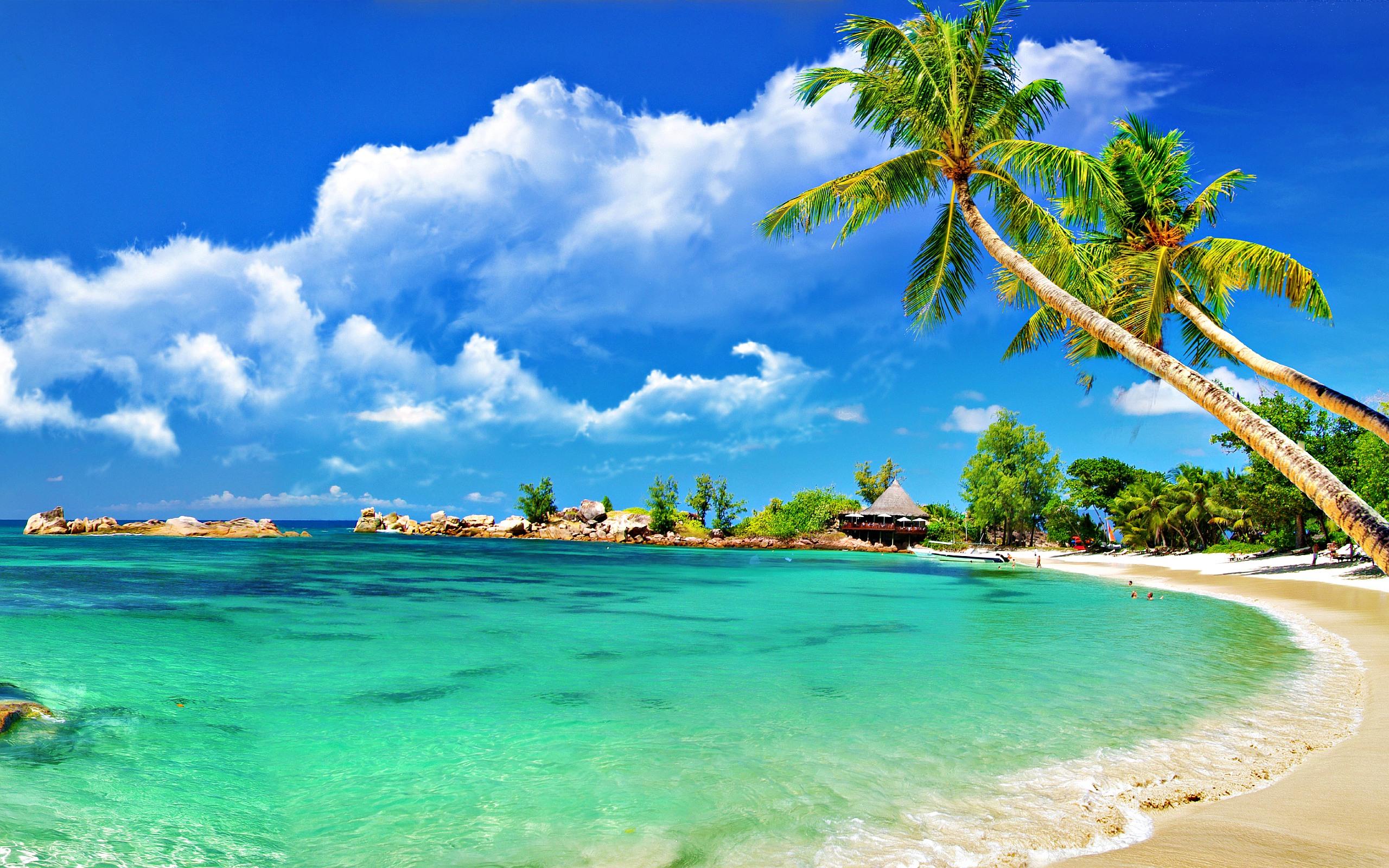 Free Download Beach Background Wallpaper 1080p 6948220 2560x1600