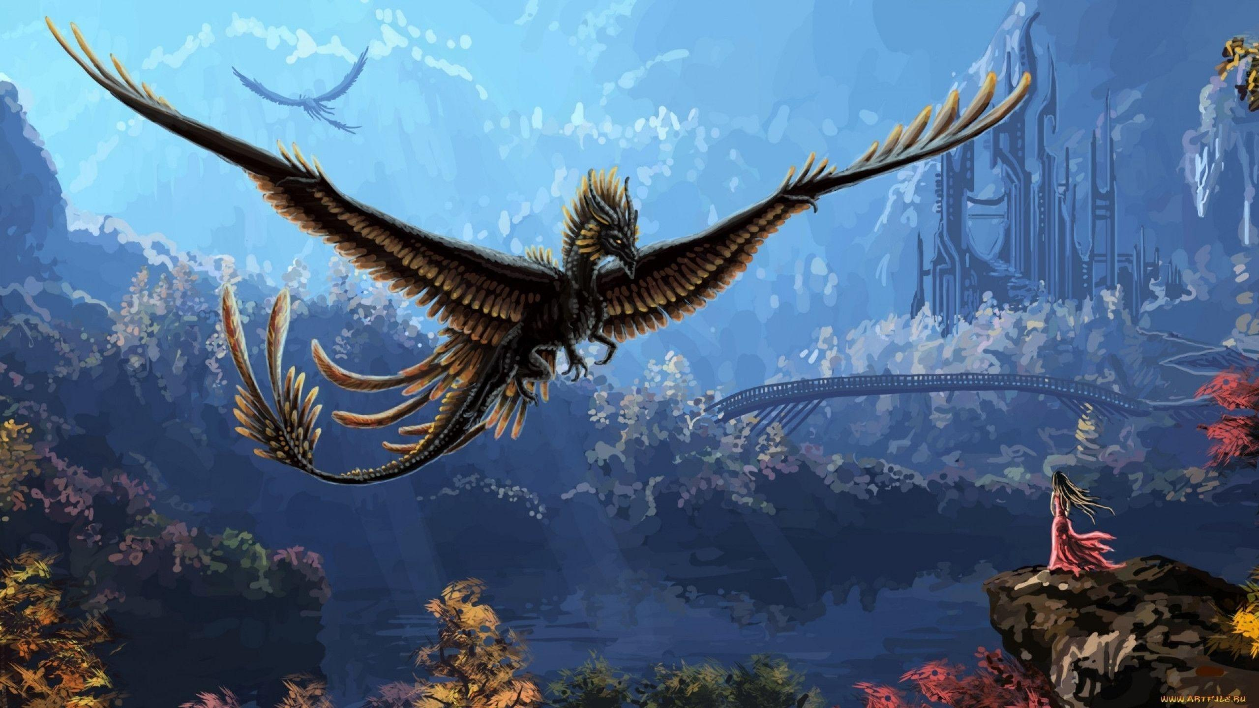 Flying Dragon Wallpapers 2560x1440