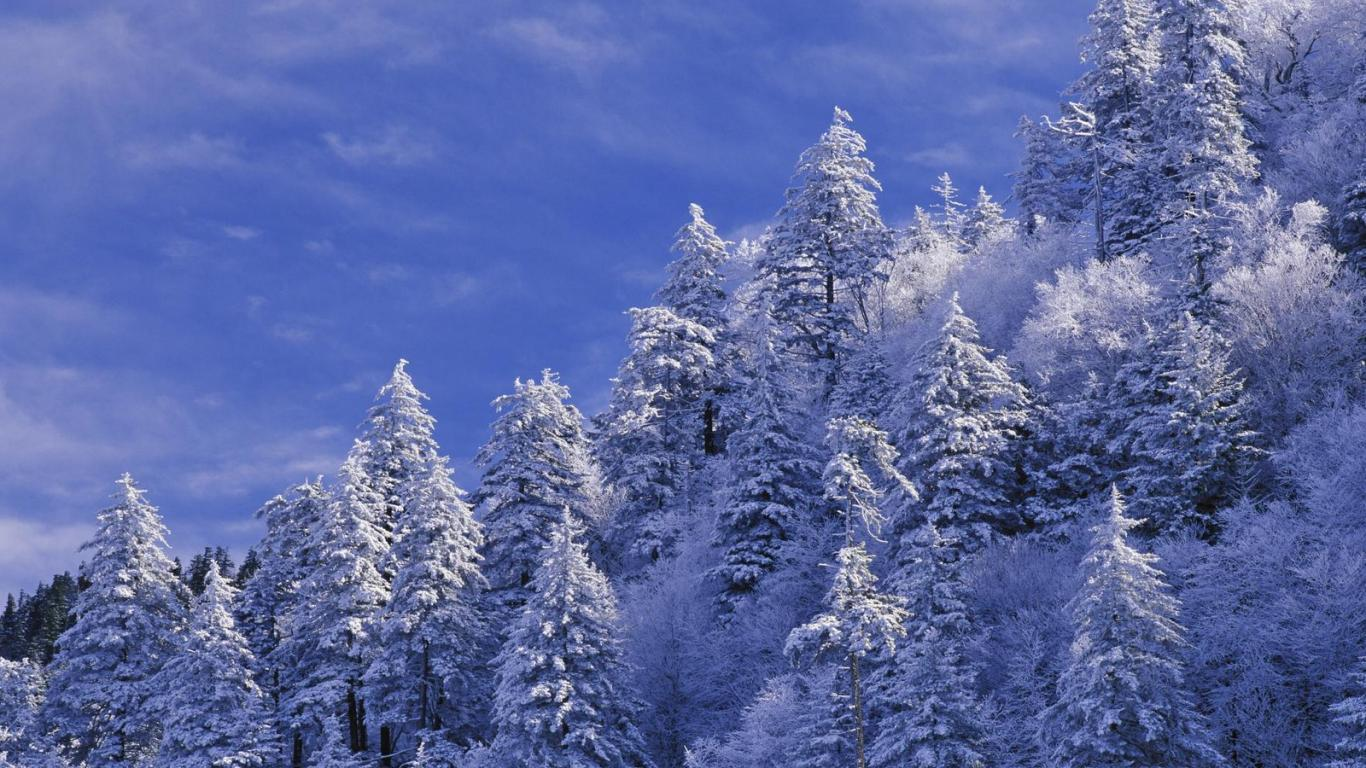 hd winter wallpaper 1366x768 - wallpapersafari