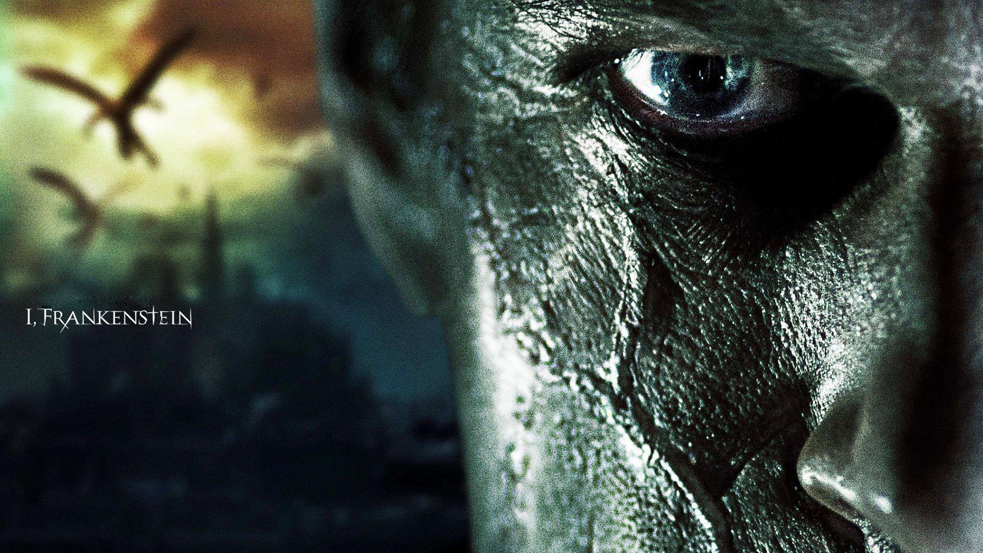 Frankenstein 2014 Movie Wallpaperjpg 1920x1080