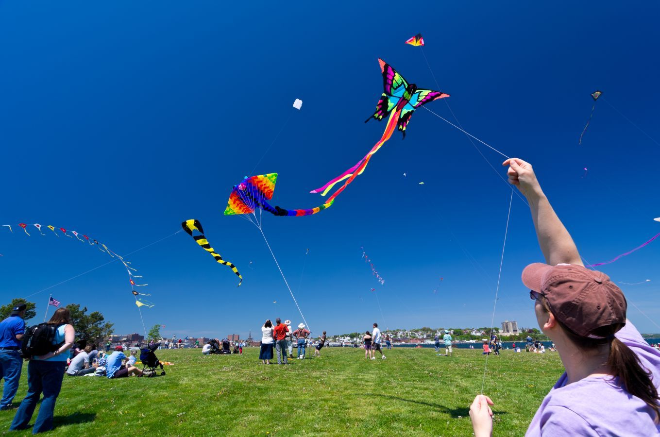 Kite Flying wallpaper with HD Quality kiteFlying kiteHD kite 1359x900