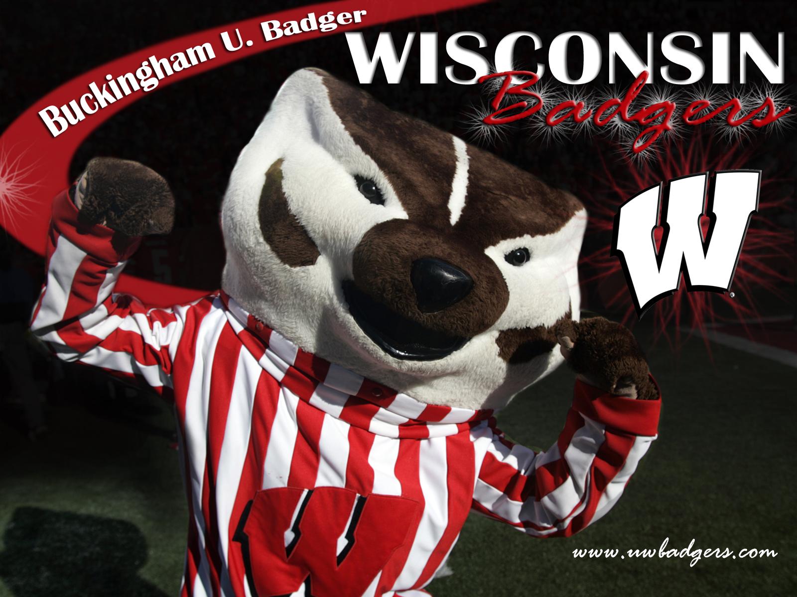 wisconsin badger wallpaper wallpapersafari