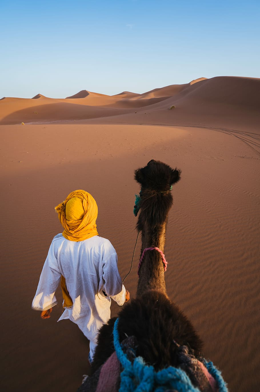HD wallpaper man walking on desert with camel man wearing yellow 910x1372