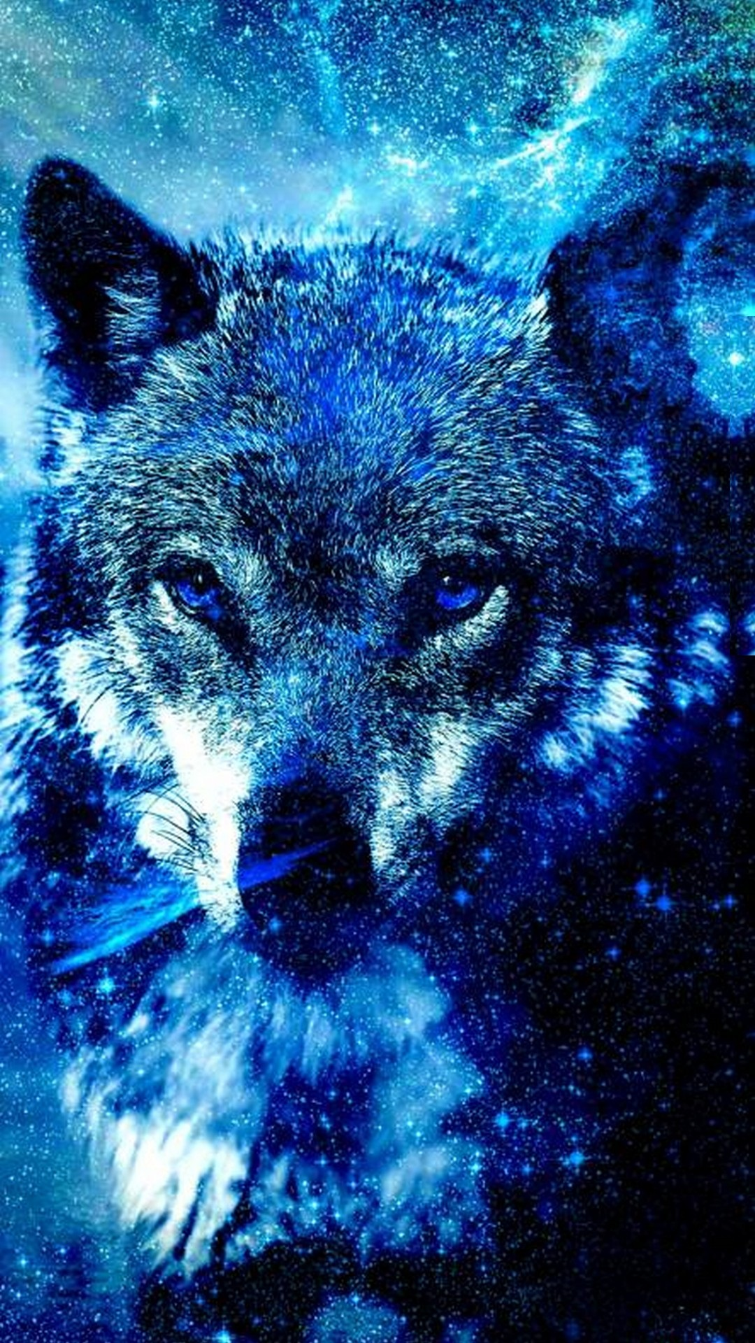 Wallpapers Phone Cool Wolf With High resolution Pixel   1080x1920 1080x1920