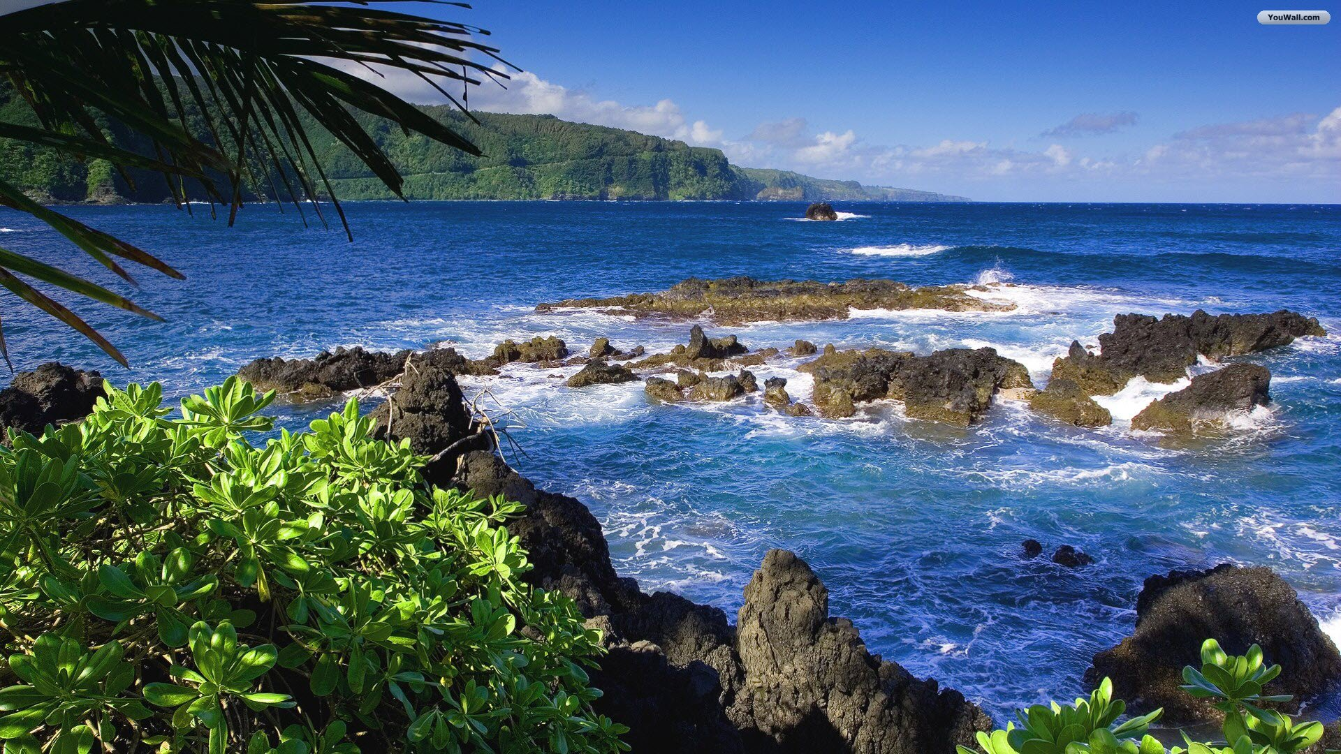 YouWall   Hawaii Beach Wallpaper   wallpaperwallpapersfree wallpaper 1920x1080