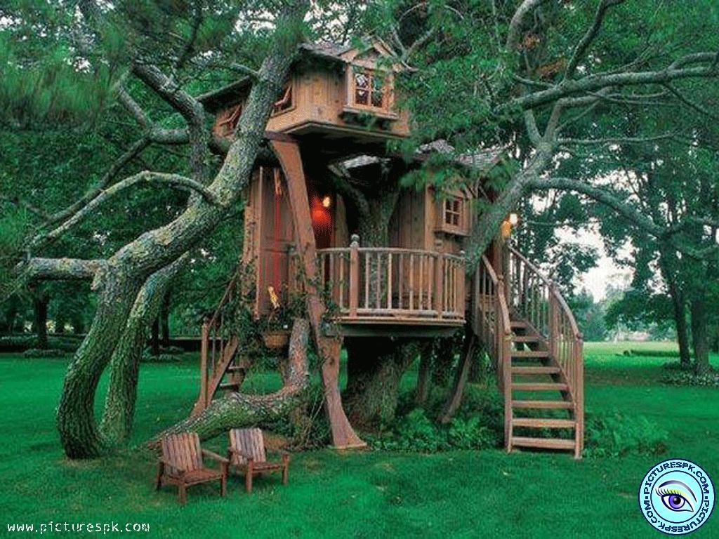 tree house wallpapers for desktop - wallpapersafari