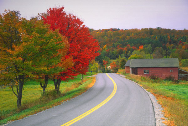 EVERY THING HD WALLPAPERS The World Most Beautiful Ever Roads Photos 600x402
