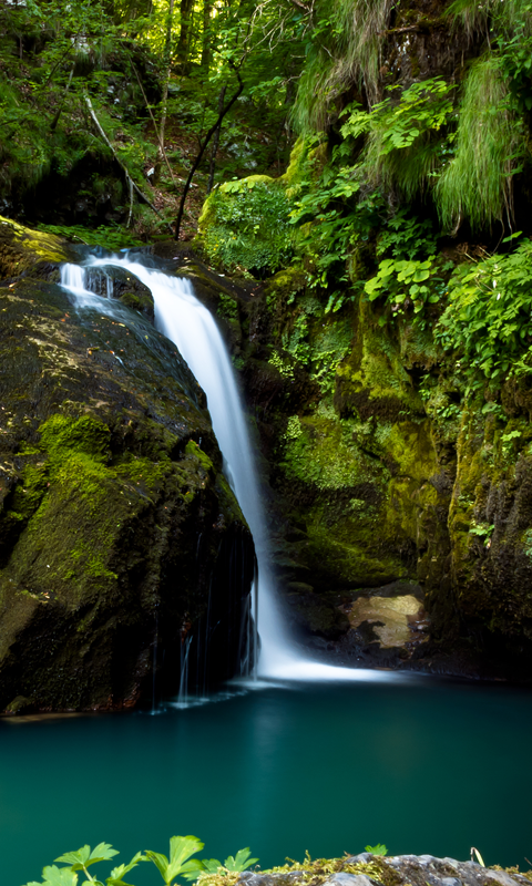 Waterfalls In The Jungle HD Live Wallpapers Live wallpapers HD for 480x800