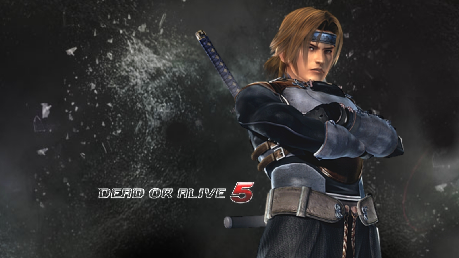 Hayate Dead or Alive 5 Wallpaper 1600x900