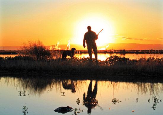 Goose Hunting Wallpaper Waterfowl hunting runner up 550x388