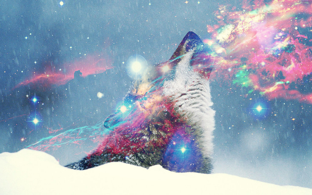 Hipster Wolf Wallpaper - WallpaperSafari