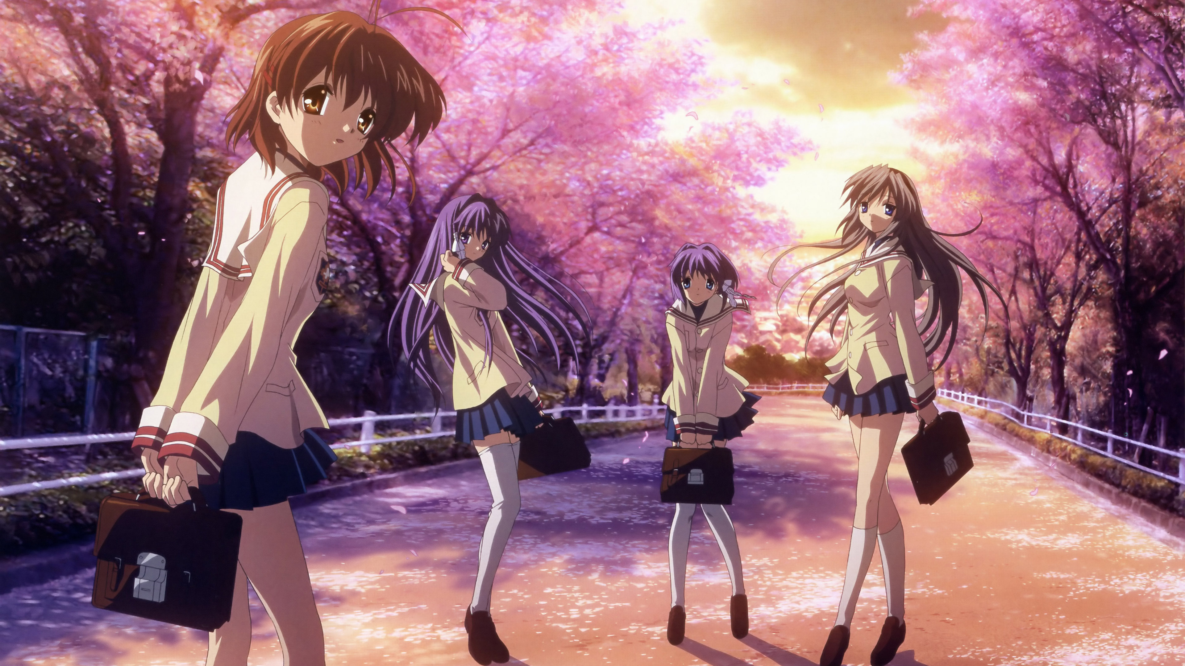 Free Download Pics Photos Anime Clannad Wallpaper 3840x2160 For