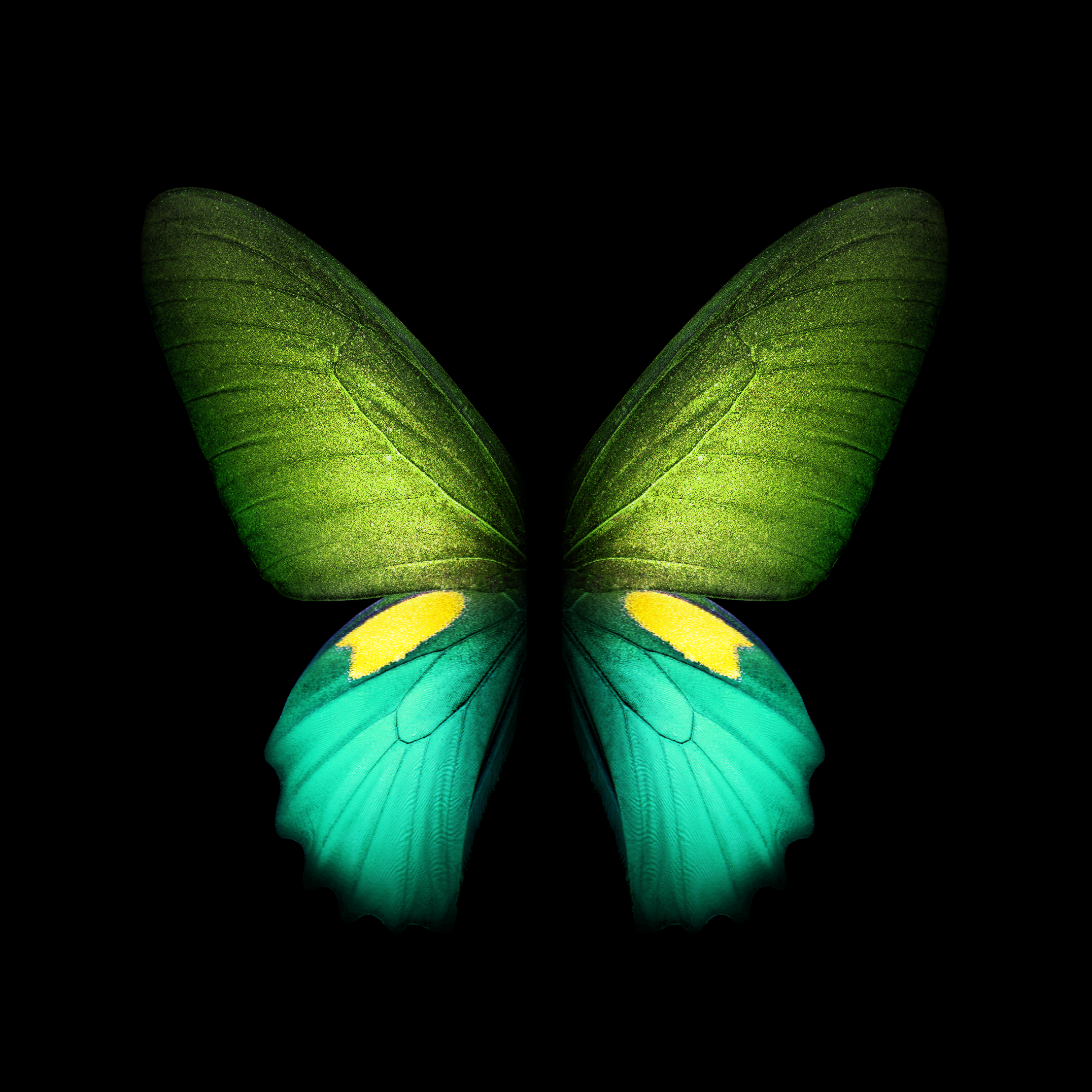 Samsung Galaxy Fold Wallpapers   Top Samsung Galaxy Fold 2152x2152