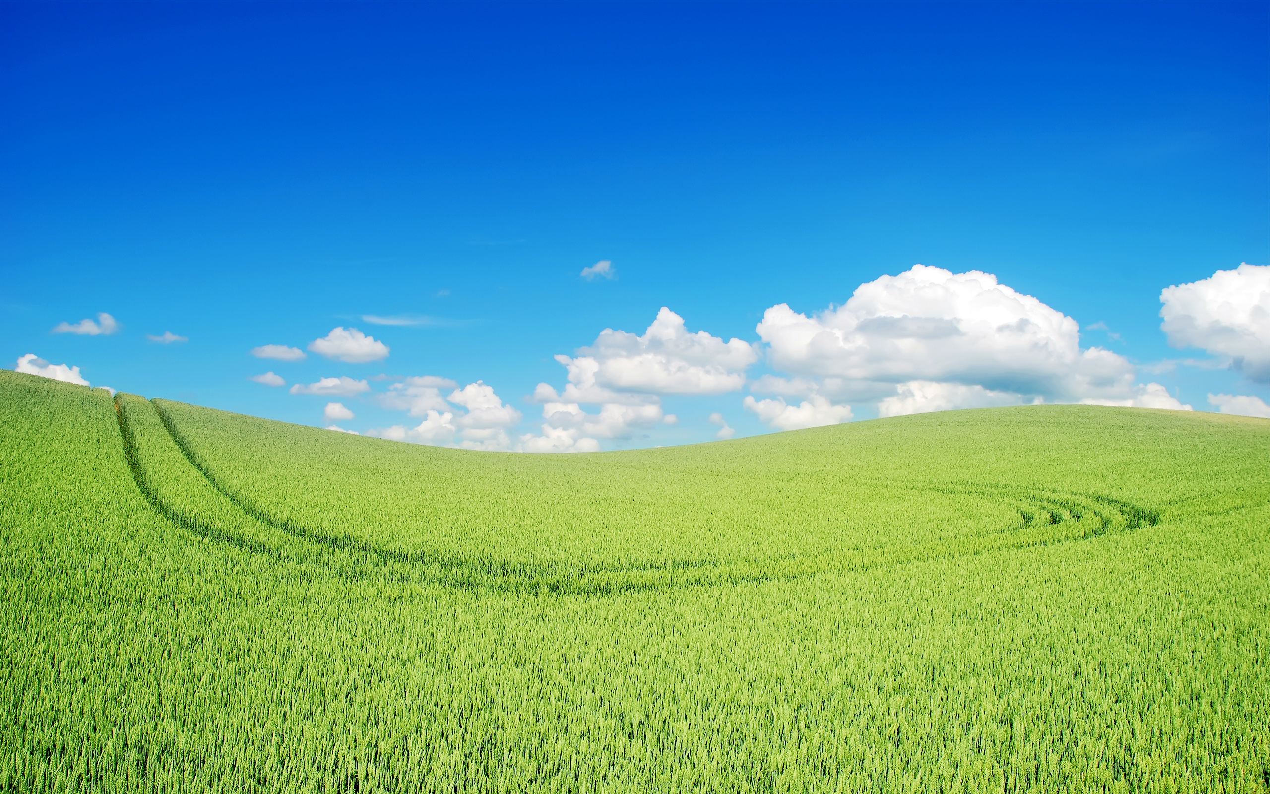 Beautiful Green Landscape Wallpapers HD Wallpapers 2560x1600