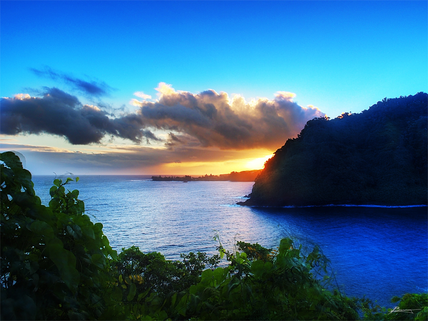 hawaii beach sunrise wallpaper Download pacific morning beach and ...