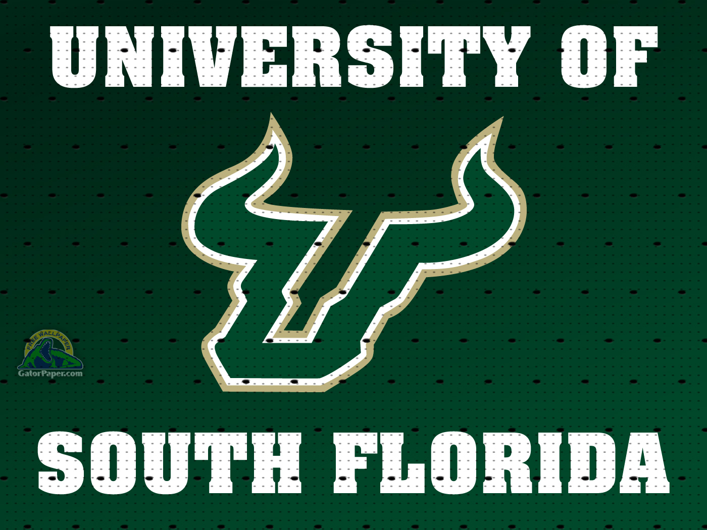 FREE USF WALLPAPER FREE UNIVERSITY OF SOUTH FLORIDA WALLPAPER 1400x1050