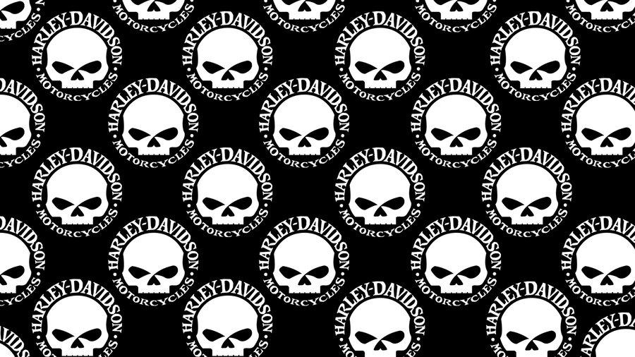 Harley Skull Logo Davidson Logos