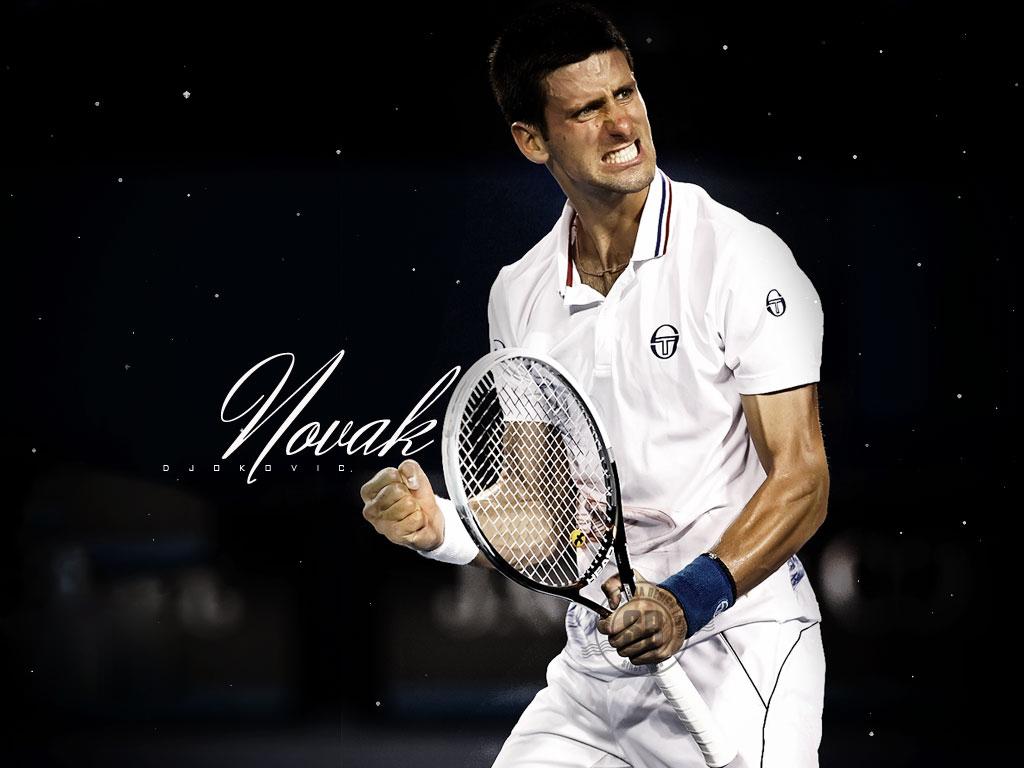 Novak Djokovic Wallpapers Wallpapers 1024x768
