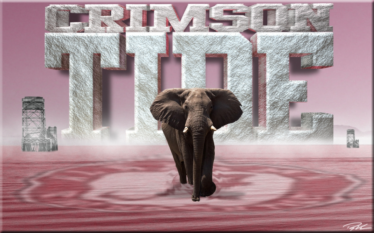 Alabama Crimson Tide Football Alabama wallpapers 1280x800