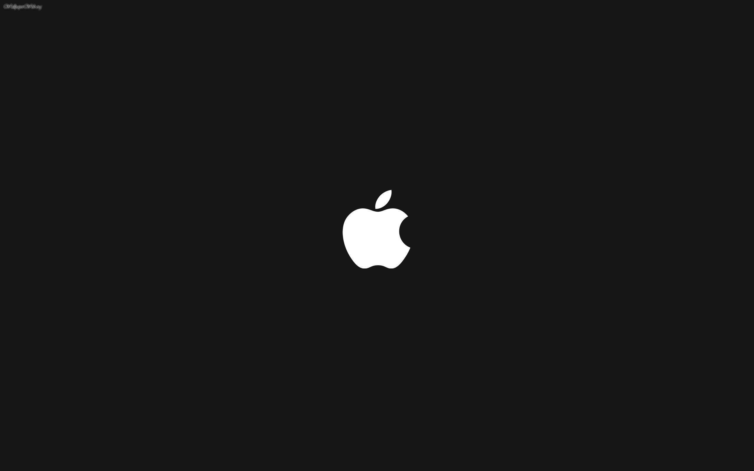 White Apple Logo HD 2560x1600