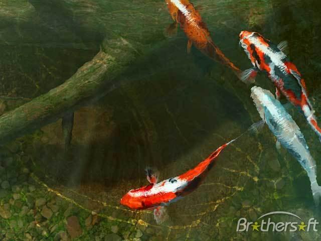 3d koi wallpaper wallpapersafari for Koi pond screensaver