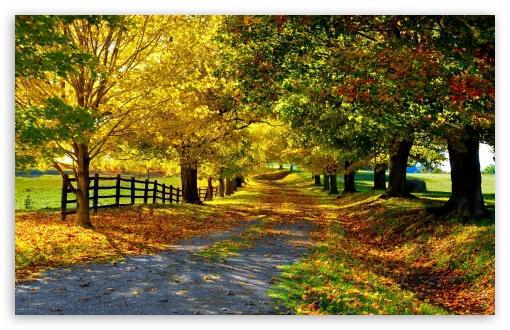 Beautiful Wallpapers For Desktop Full Screen Wallpapersafari
