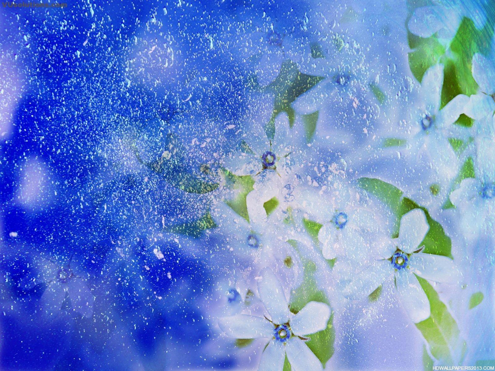 Natural Flower Wallpaper Hd Wallpapers