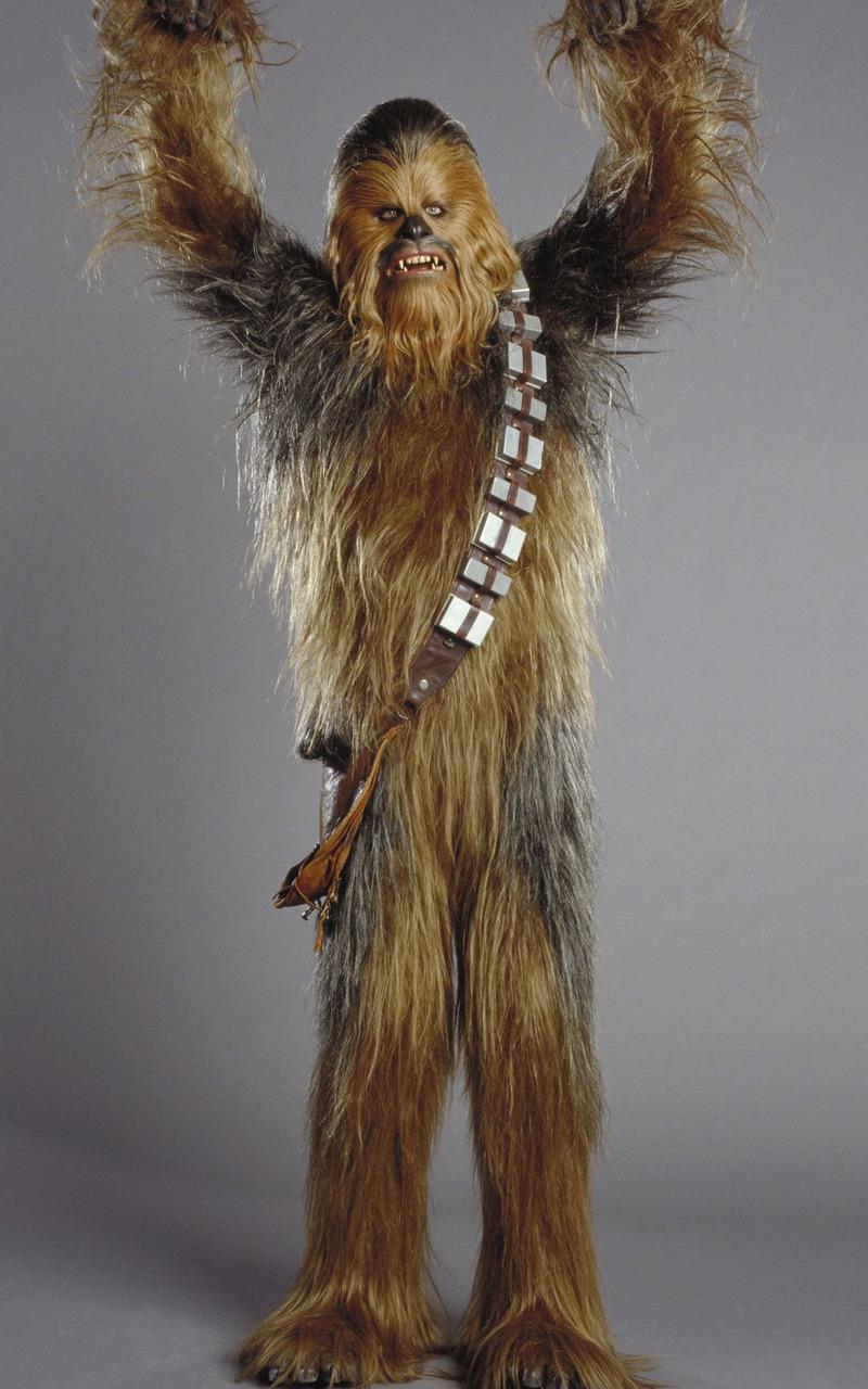 Chewbacca   Star Wars Mobile Wallpaper 6953 800x1280