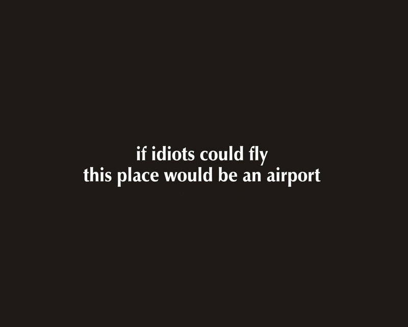 funny text funny fly idiots airports 1280x1024 wallpaper Funny 800x640