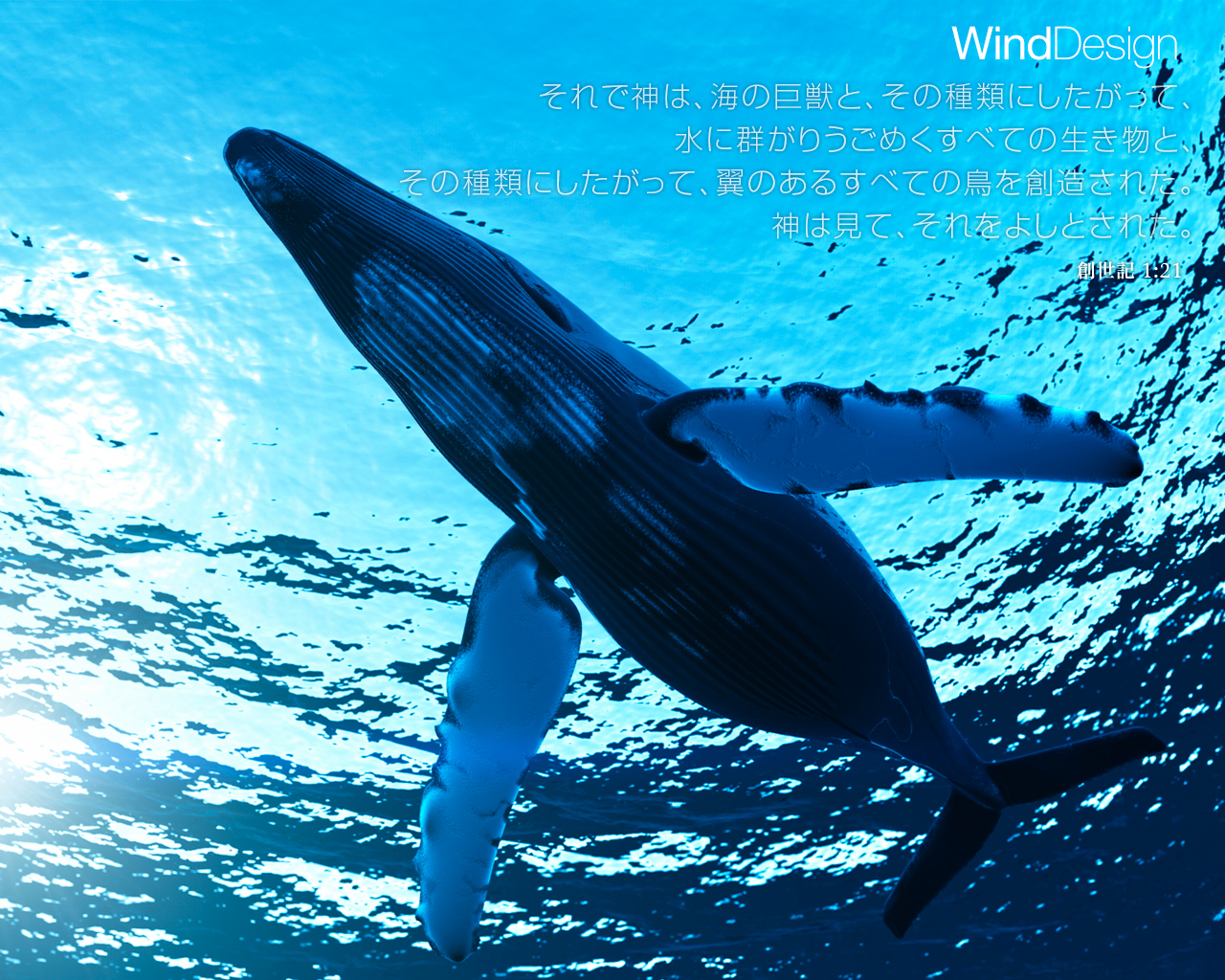whale wallpaper   weddingdressincom 1280x1024