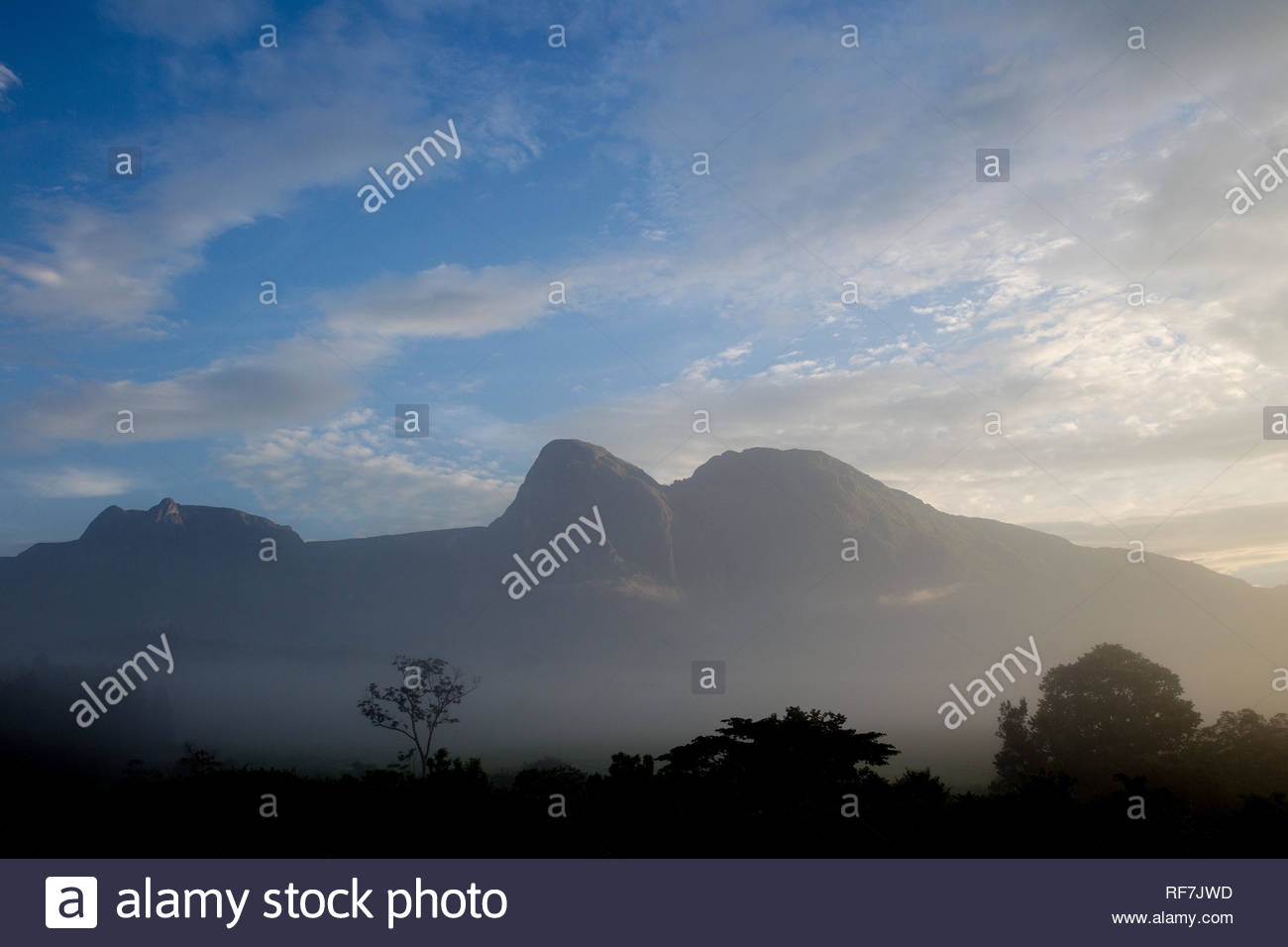 Mulanje Mountain Stock Photos Mulanje Mountain Stock Images   Alamy 1300x956