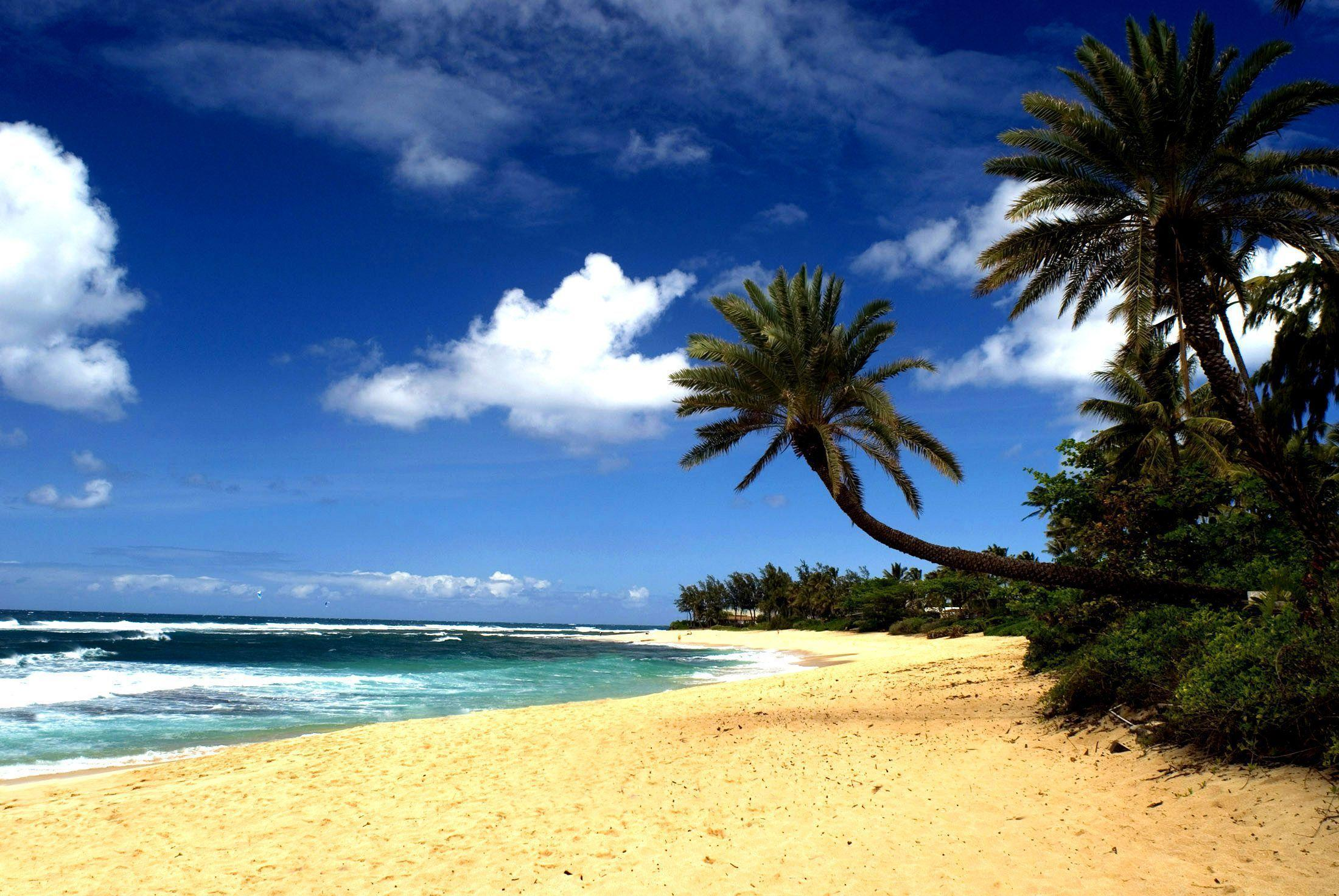 Hawaiian Beach Wallpapers 2200x1473