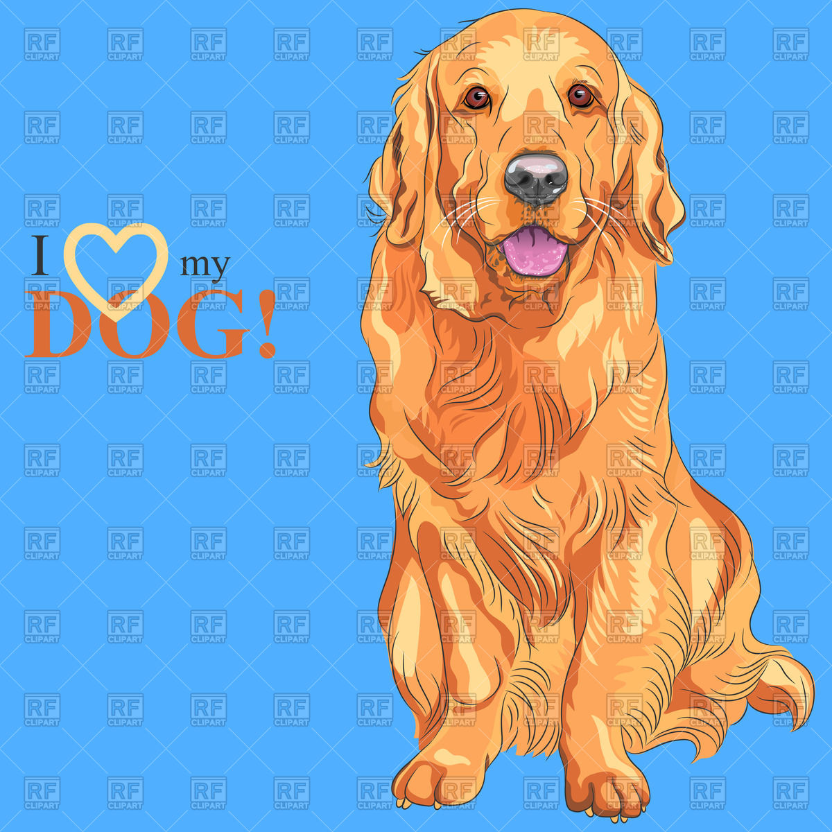 Sitting Golden Retriever on the blue background   I love my dog 1200x1200