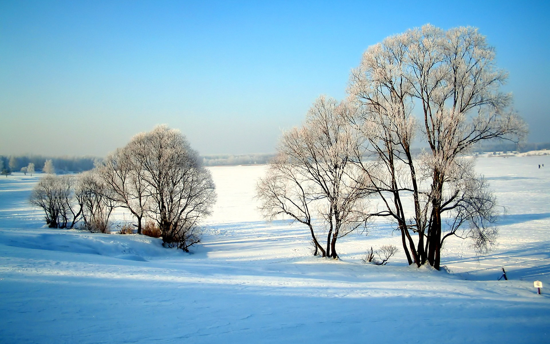 19201200 Widescreen Winter Snow Scenes   Dreamy Winter Snow Wallpaper 1920x1200