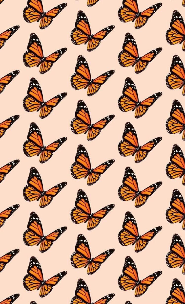 VSCO Wallpaper Butterfly   KoLPaPer   Awesome HD Wallpapers 749x1229