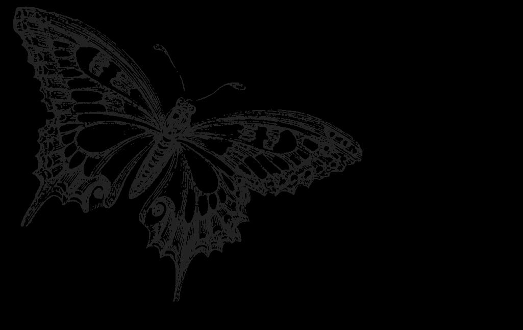 dark butterfly wallpaper desktop - photo #13