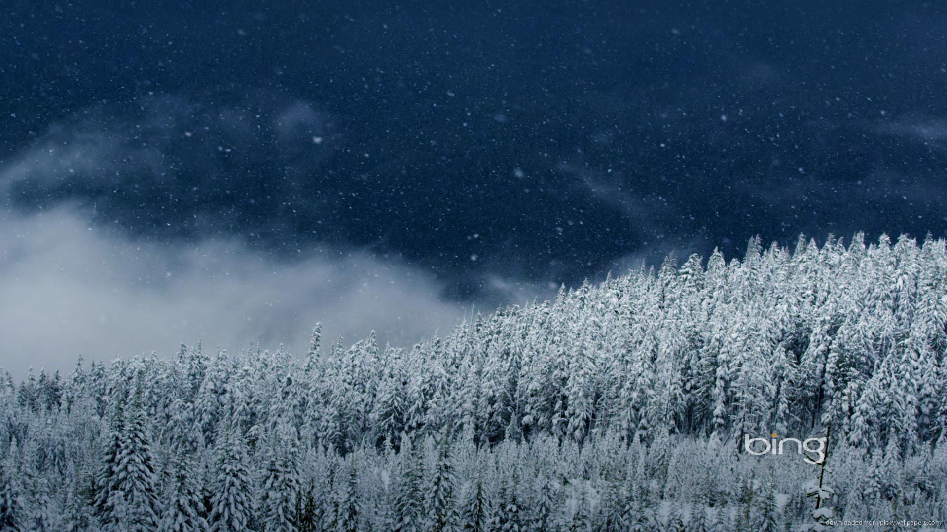 1920x1080 Bing Wallpaper Winter Wallpapersafari