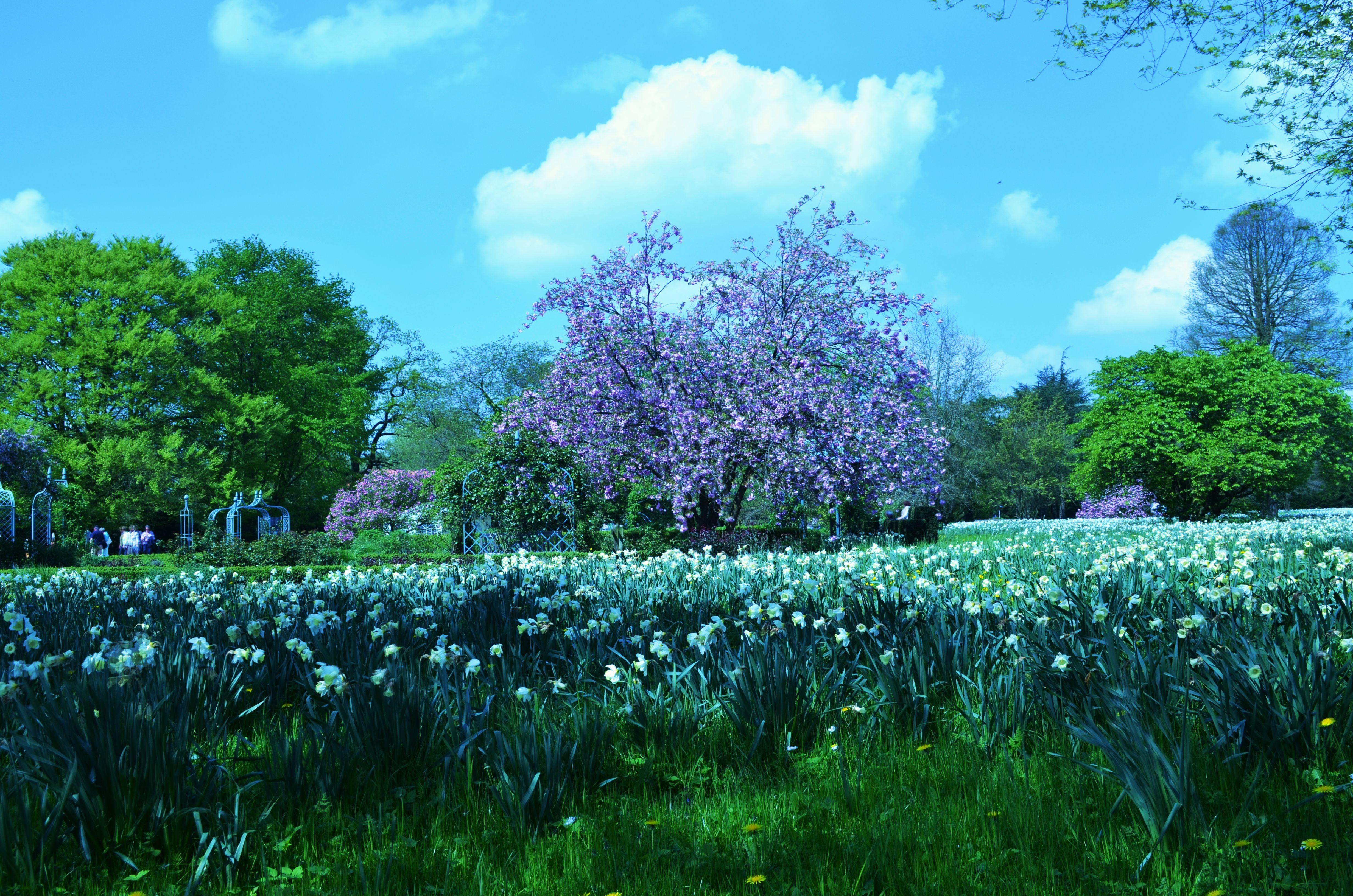HD Nature Wallpapers Landscapes Background Images Download 4k 4928x3264