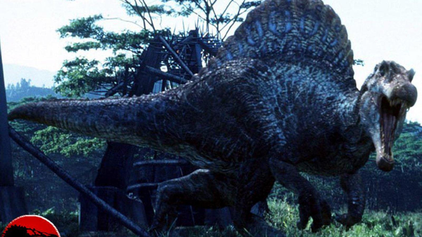 Spinosaurus wallpaper hd wallpapersafari - Liste des dinosaures carnivores ...