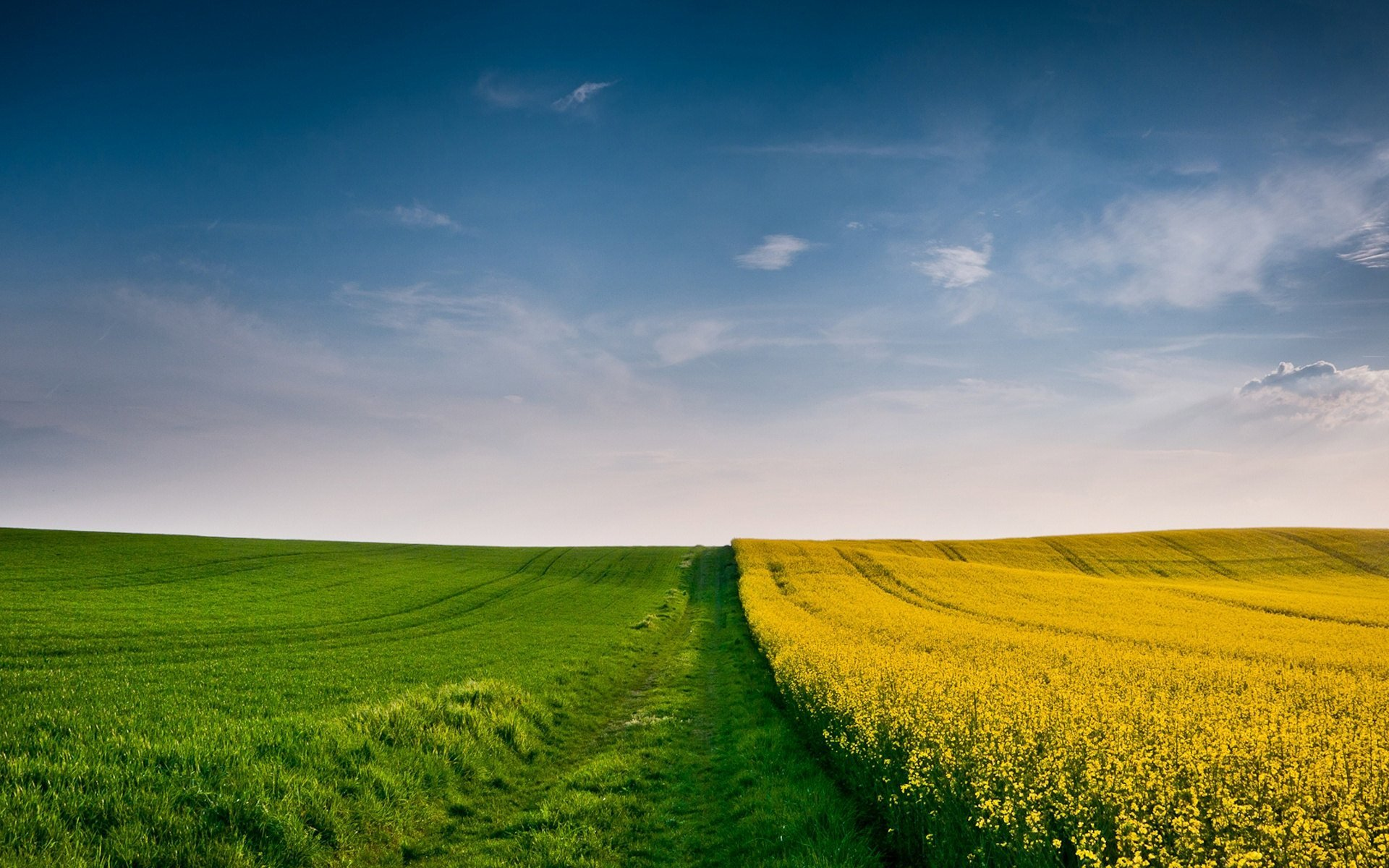 Description Green and Yellow Fields is a hi res Wallpaper for pc 1920x1200