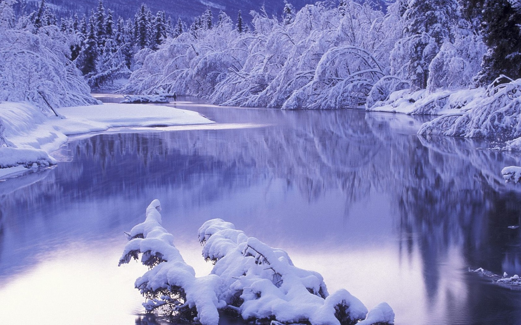 10 winter landscapes Cute wallpapers 1680x1050