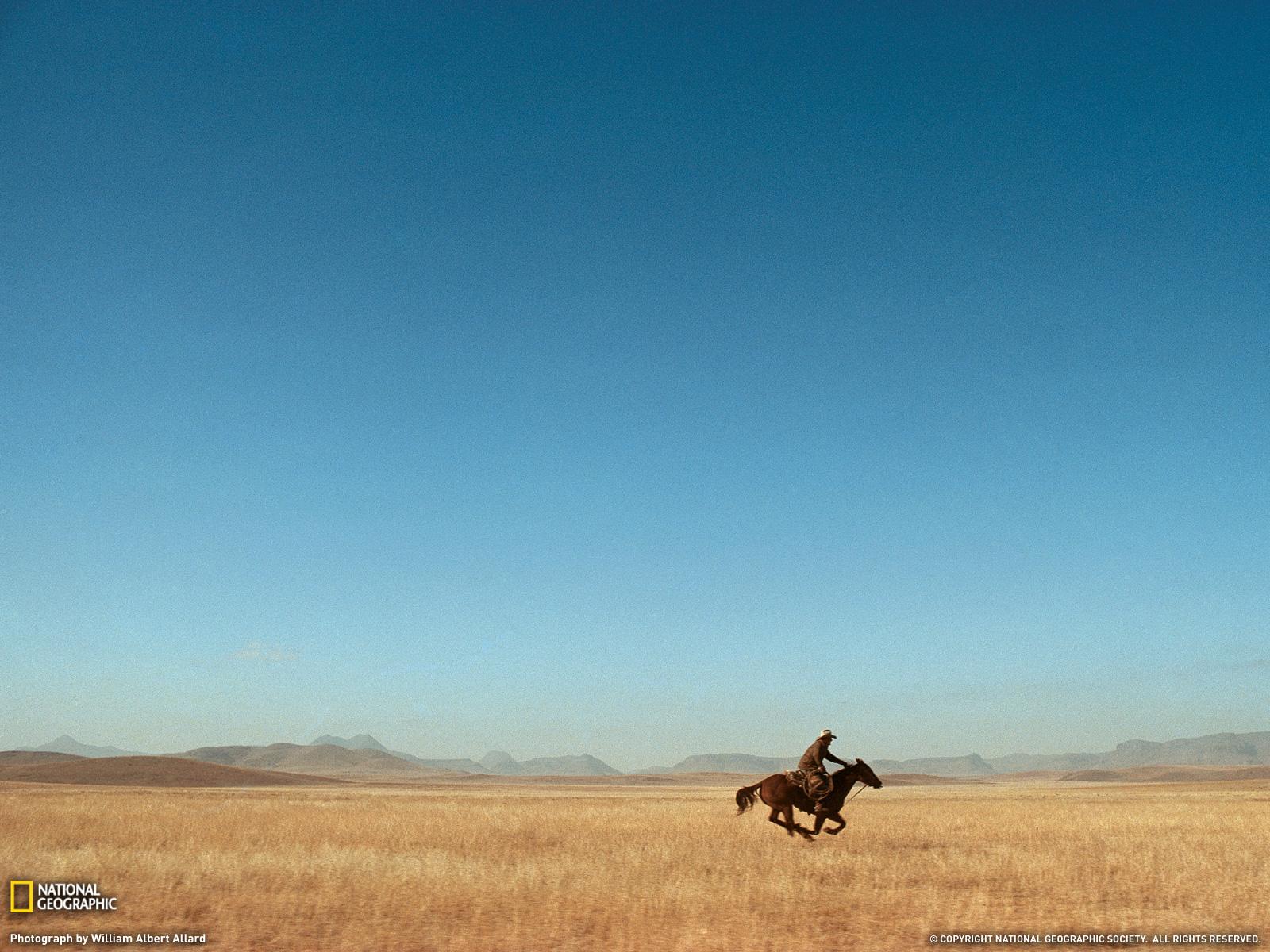 Free Texas Screensavers And Wallpaper Wallpapersafari
