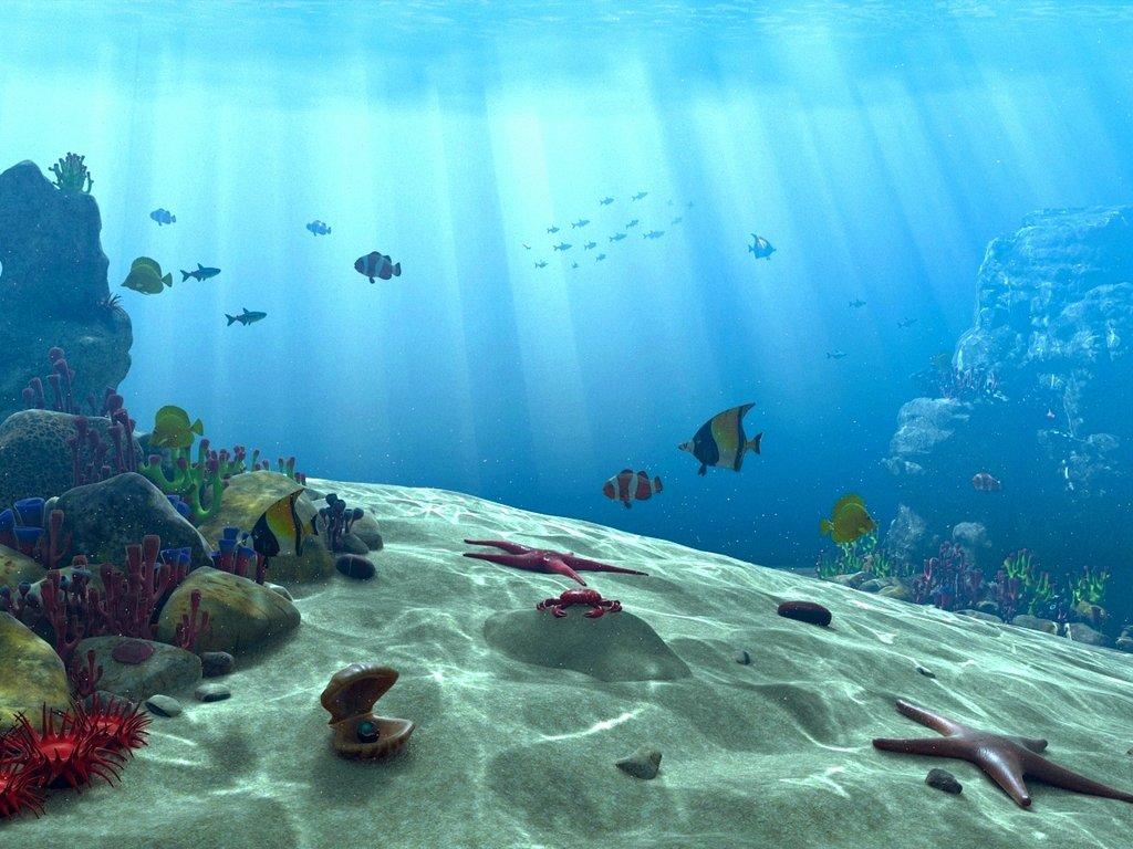 Underwater Ocean Scene Wallpaper Underwater scene by akchilug 1024x768