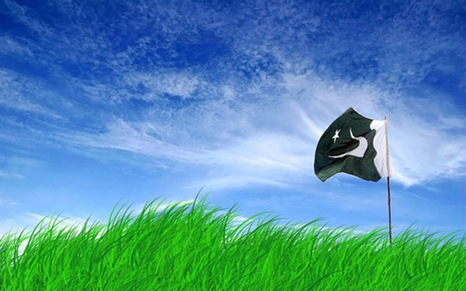 Pakistan Flag Pictures HD Wallpapers 1600x1000