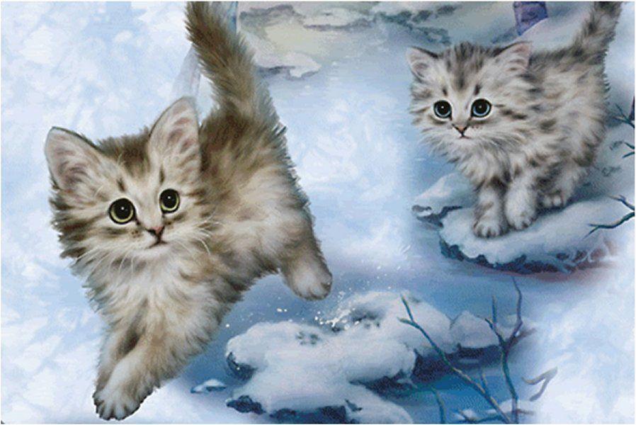 Free Wallpaper Winter Cats - WallpaperSafari